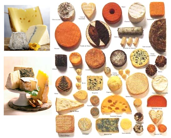 wiki list french cheeses