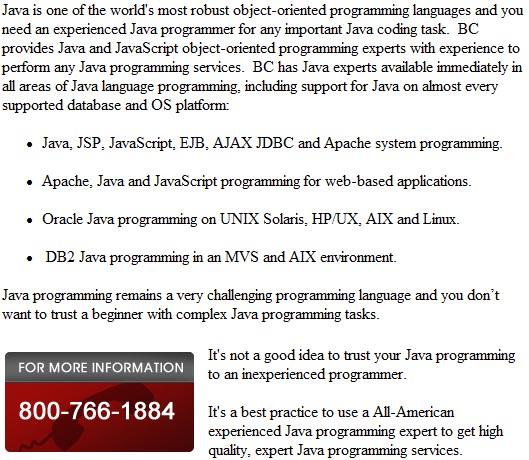 Oracle Java programmers