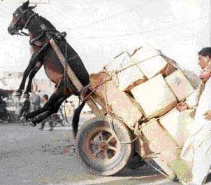 Image result for overloaded